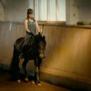 Reitbeteiligung (Pferd) gesucht