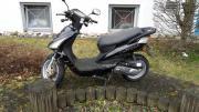 Rex 600 zu