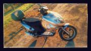 Roller 50ccm REX