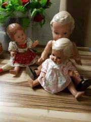 Schildkröt Puppen Hans,
