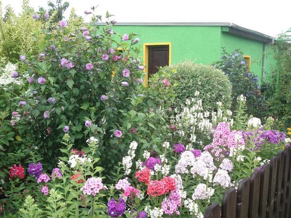 sch ner garten mit gro er berdachter terrasse ostende 39 sommerfreude 39 eberswalde in berlin. Black Bedroom Furniture Sets. Home Design Ideas