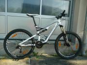 Specialized-Mountainbike Fully