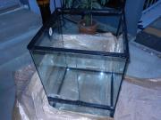 Terrarium mit integriertem