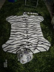 Tigerfell mit Kopf