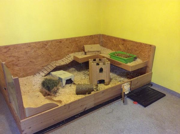 top meerschweinchenstall eigenbau in schwetzingen. Black Bedroom Furniture Sets. Home Design Ideas
