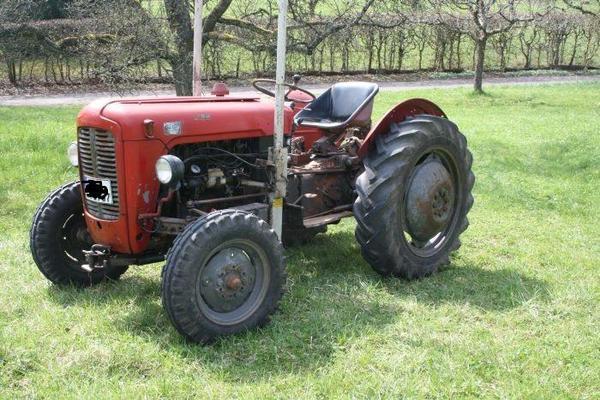 traktor mf 35 massey ferguson in schorndorf traktoren. Black Bedroom Furniture Sets. Home Design Ideas