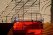 Transportbox für Hamster
