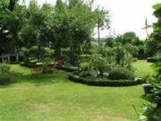 Übernehme Gartenarbeiten