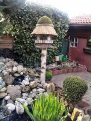 Vogelhaus auf Birkenstamm
