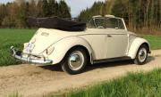 VW Käfer Typ