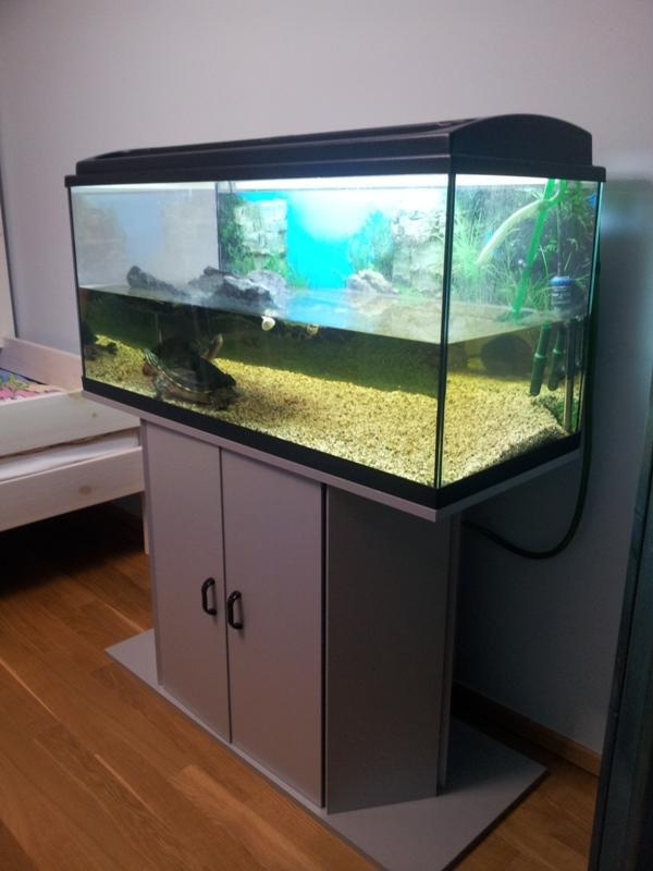 wasserschildkr ten mit eheim aquarium und unterschrank in frankfurt fische aquaristik kaufen. Black Bedroom Furniture Sets. Home Design Ideas