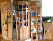 Wohnzimmer-/Gästezimmer Schrank