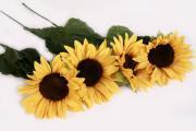 4x Kunstsonnenblume-Kunstblume-Dekosonnenblume-Seidensonnenblume-Stoffblume-50cm