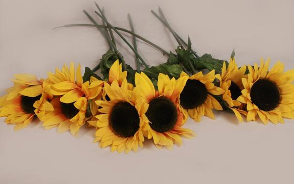 8x Kunstsonnenblume-Kunstblume-Dekosonnenblume-Seidensonnenblume-Stoffblume-1. 10m - Berching - Gebraucht, wurde nur zur Dekoration verwendet 4x Kunstsonnenblume-Kunstblume-Dekosonnenblume-Seidensonnenblume-gelb und aufgeblüht. Die Stengel sind aus biegbaren Draht mit Plastik überzogen, die Blüten und die Blätter aus Textil. Die Blät - Berching
