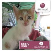 Annie ist auf