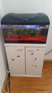 Aquarium 60 Liter +