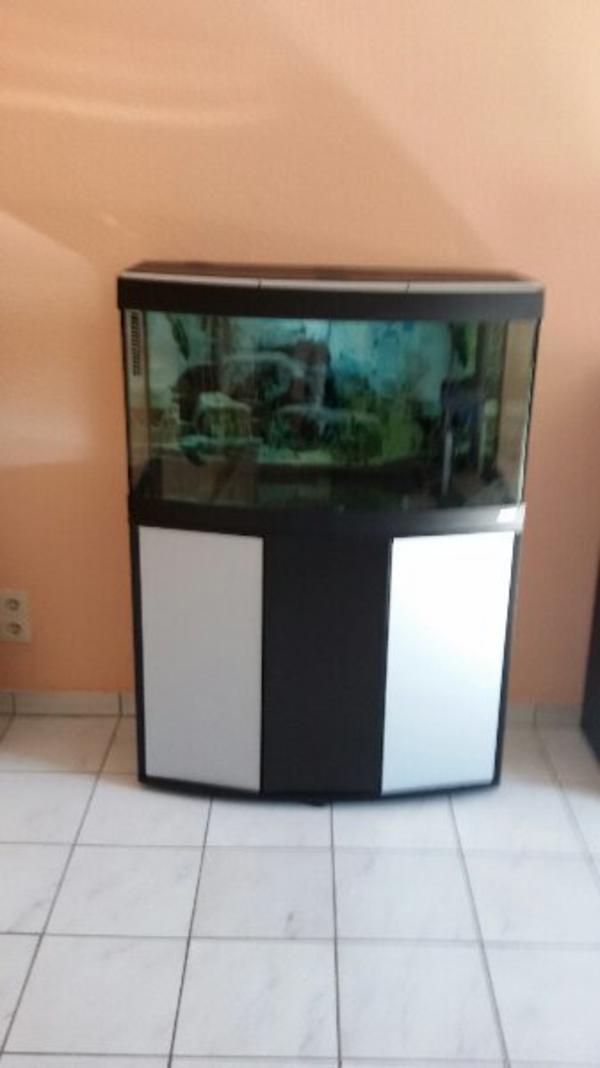 aquarium au gebraucht kaufen nur 2 st bis 65 g nstiger. Black Bedroom Furniture Sets. Home Design Ideas