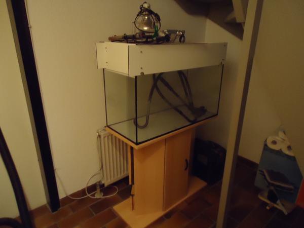 wasserschildkr ten aquarium kleinanzeigen kaufen verkaufen bei deinetierwelt. Black Bedroom Furniture Sets. Home Design Ideas