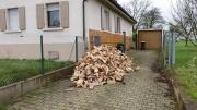 Brennholz Erle