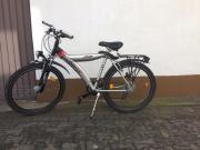 Fahrrad Pegasus 26