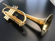 Galileo Jooleo B Trompete vergoldet