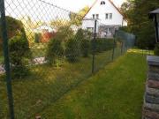 Gartenzaun, Grüner Maschendraht