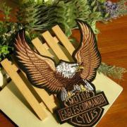 Harley Davidson Eagles