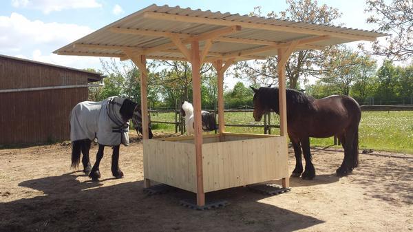heuraufe mit dach 2 50 x 2 50m pferde pony shetty raufe 1 80 x1 80m bild 3 von 8. Black Bedroom Furniture Sets. Home Design Ideas