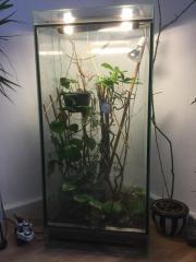 Hochwertiges Glasterrarium [Chamäleon,