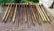 Holzpfähle Holzpfosten Weidepfähle Zaunpfahl