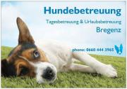 Hundebetreuung Tages / Wochenend &