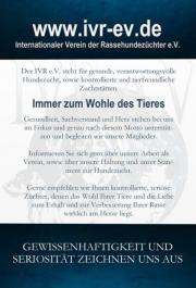 Internationaler Verein der