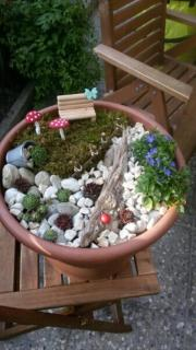 Pflanzen & Garten In Lehrensteinsfeld - Günstige Angebote - Quoka.de Miniaturgarten Pflanzkubel Balkon