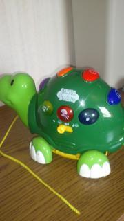 Schildkröte STROLL Buddies