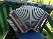Steirische Harmonika Alpengold