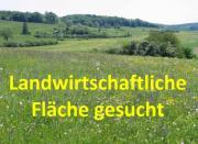 suche Bauernhof Landwirtschaft landwirtschaftliche Fläche