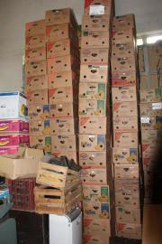 Über 50 leere stabile Bananenkartons