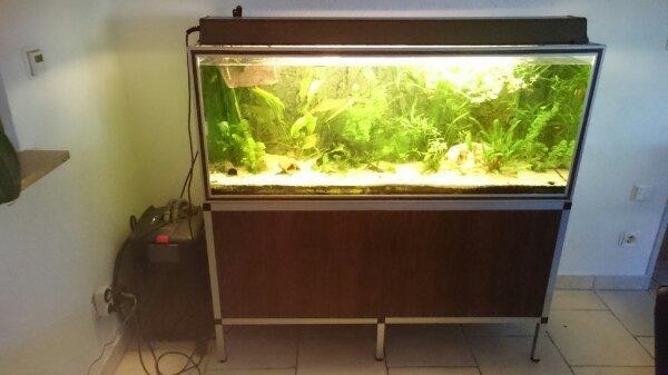 aquarium heizung kleinanzeigen kaufen verkaufen bei deinetierwelt. Black Bedroom Furniture Sets. Home Design Ideas