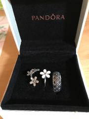 Wunderschöne Pandora Ringe